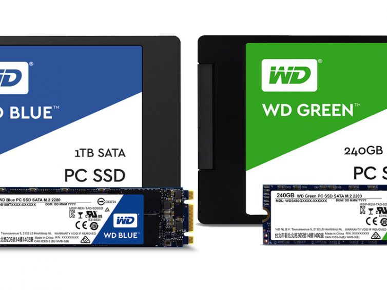 Wd Blue vs WD Green